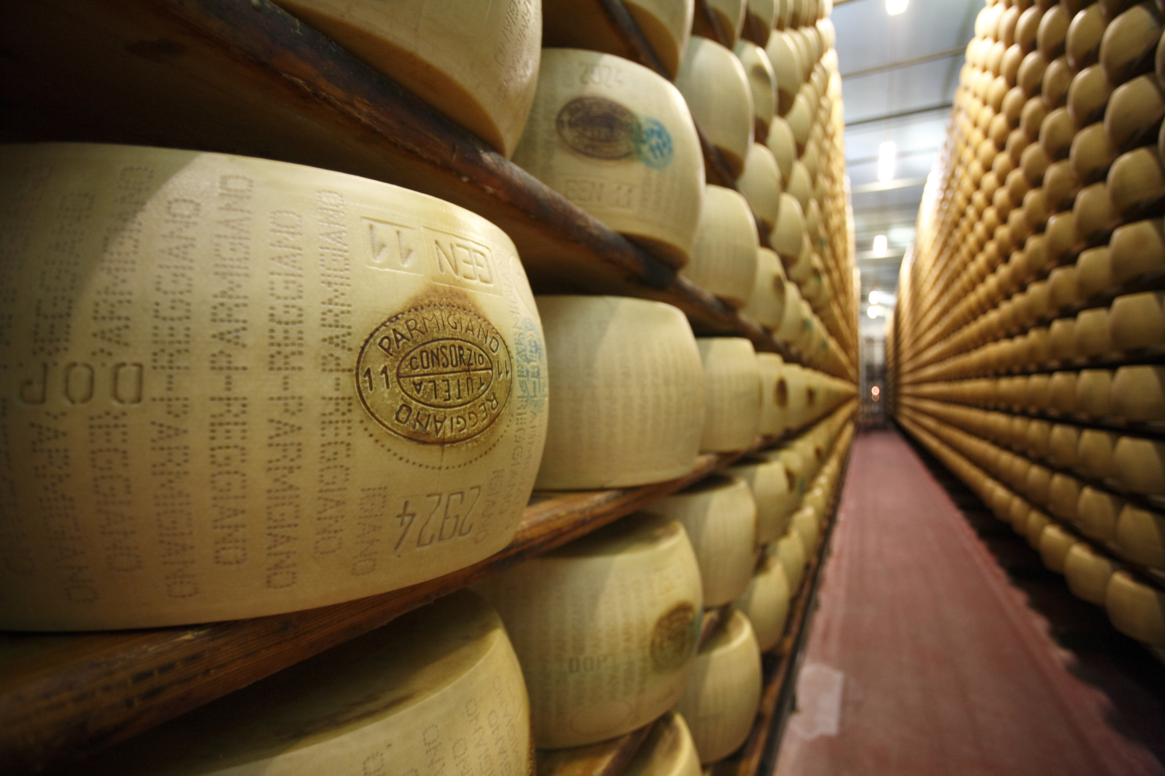 Parmigiano_Reggiano
